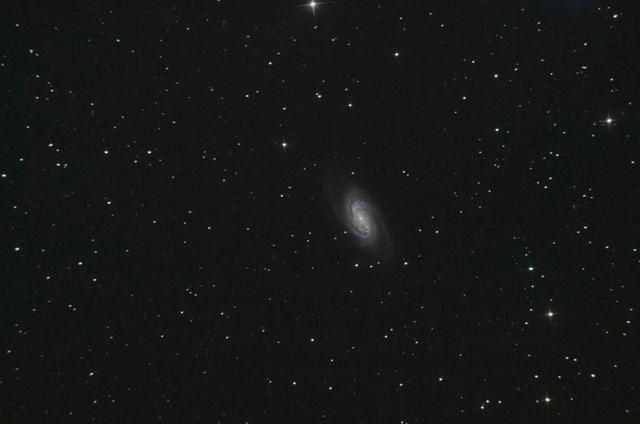 NGC 2903, Spiral Galaxy in Leo